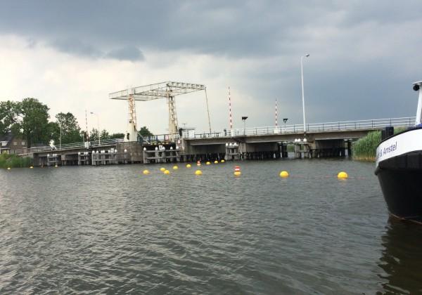 Ballenlijn brug